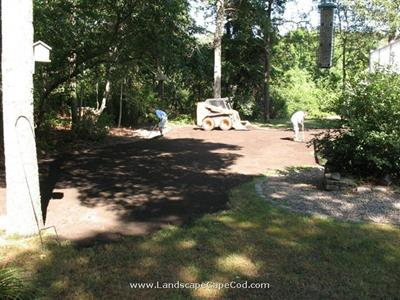 Click to view album: Stump Removal and Yard Renovation